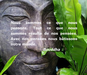 Bouddha - pensées