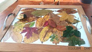 plateau-feuilles-automne-1