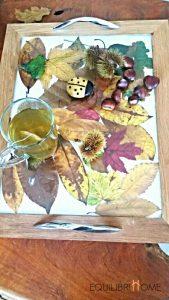plateau-feuilles-automne-4
