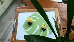 plateau-original-diy-plante-vert-monstera-