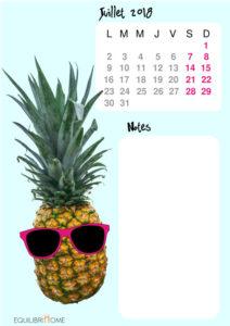 Calendrier-de-l-ete-juillet-ananas-img