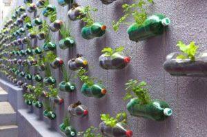 Amenager-sa-terrasse-diy-mur-vegetal-bouteillle
