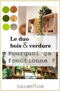 Deco-bois-et-verdure-duo-gagnant