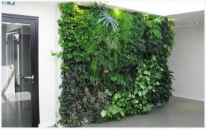 Deco-mur-vegetal
