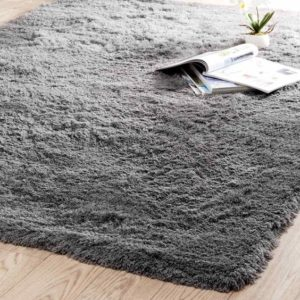Isoler-son-logement-hiver-abordable-tapis