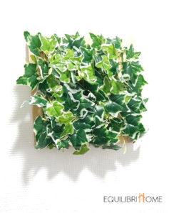 Creer-un-lieu-de-vie-unique-peut-nous-booster-pouvoir-des-plantes