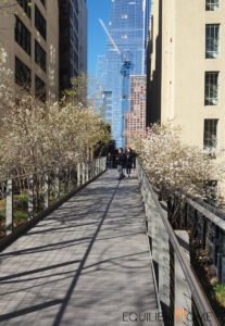 Recycler-infrastructures-highline-ny-parc-urbain-3